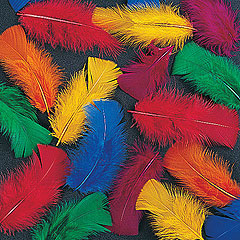 Collage-Feathers