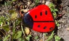 Painted ladybird stones