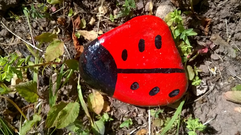 You are currently viewing Painted ladybird stones